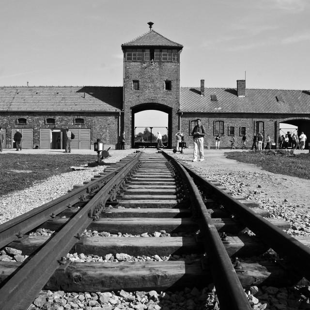 """""""Birkenau"""" stock image"""