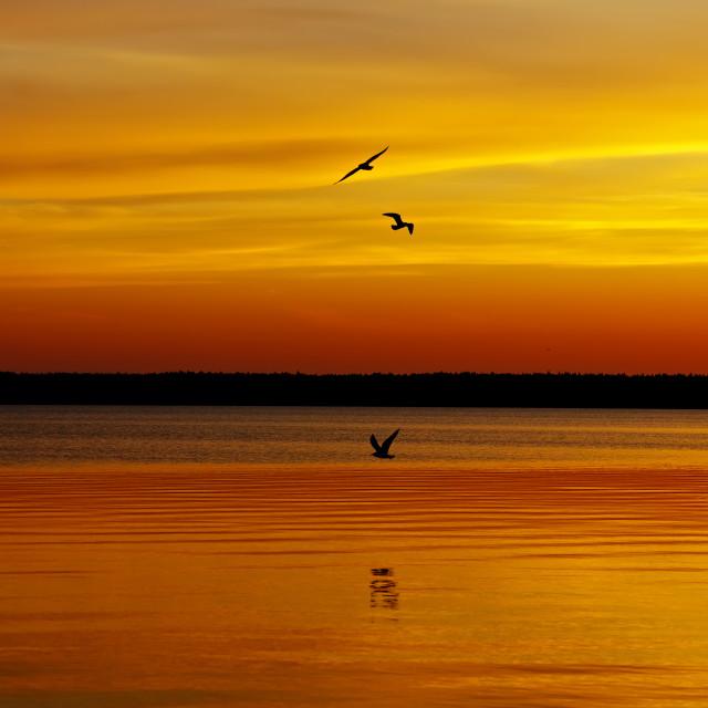 """Orange sunset lake"" stock image"