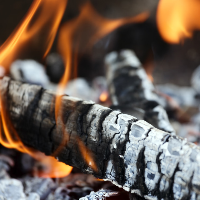 """""""Wood fire"""" stock image"""