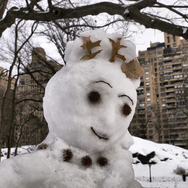 """Snow Lady"" stock image"