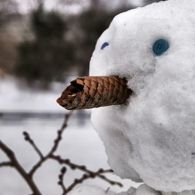 """NY Snow Person Portrait"" stock image"