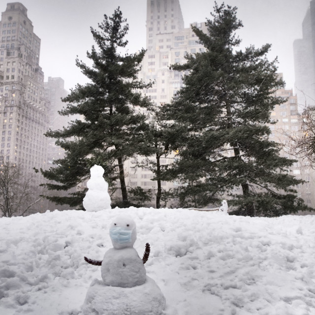 """""""Snow Doctor, Central Park"""" stock image"""