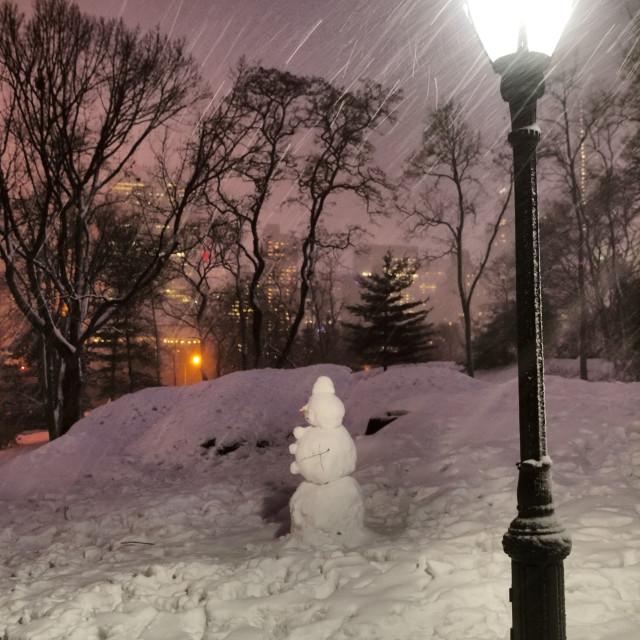 """""""Noir Snowman"""" stock image"""