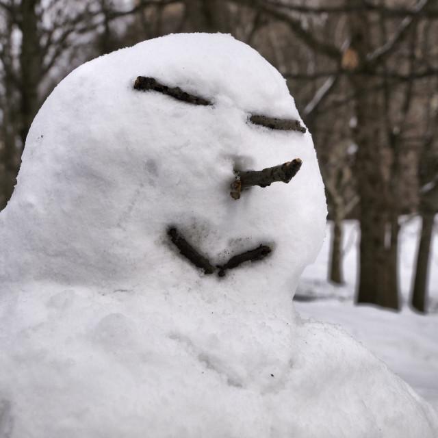 """""""Happy Snow Man"""" stock image"""