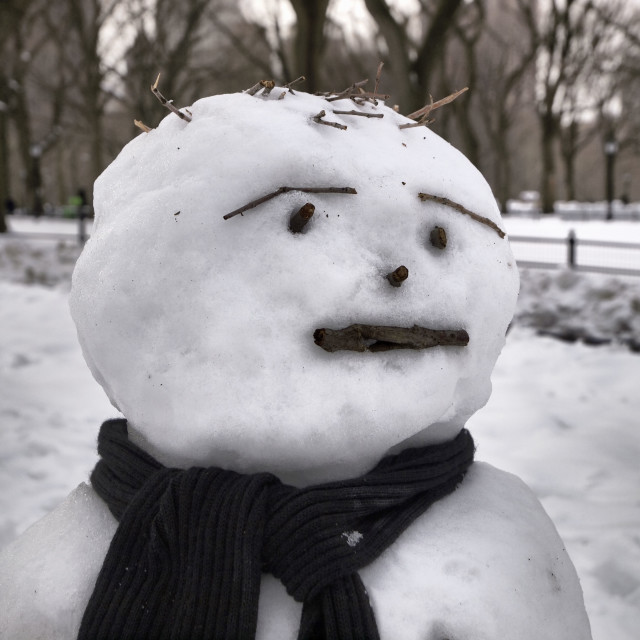 """Snow Man is Unimpressed"" stock image"