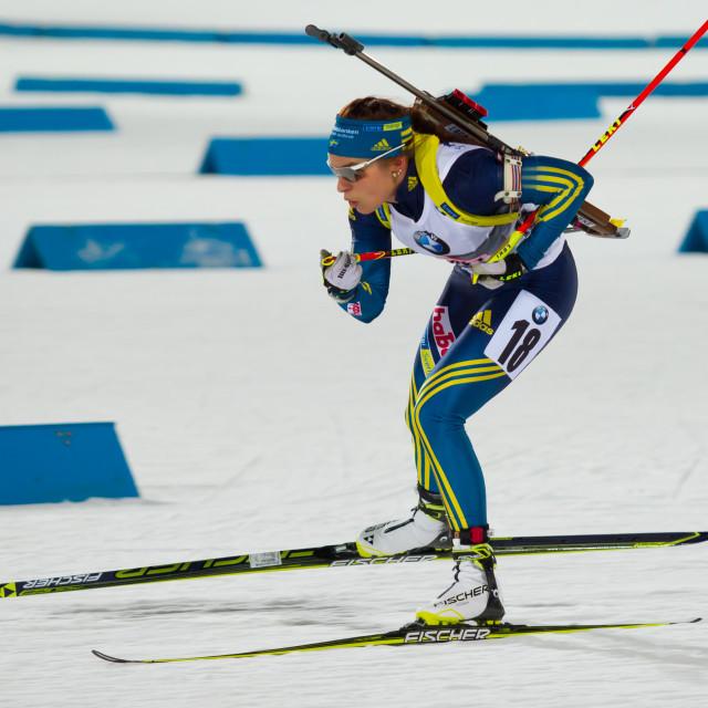 """""""Swedish biathlon"""" stock image"""
