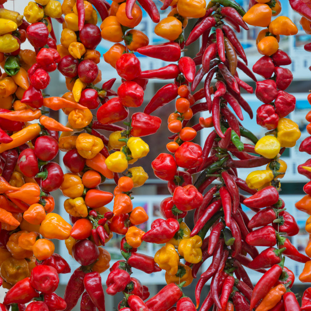 """Colorful peppers"" stock image"