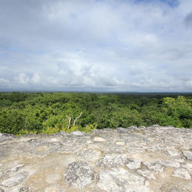 """View of jungle from Mayan temple at Yaxha, Guatemala"" stock image"