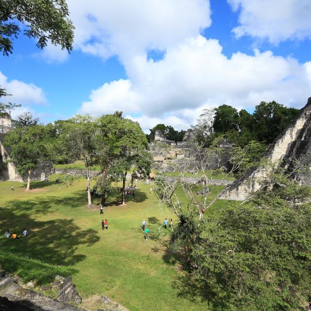 """Gran Plaza, Tikal National Park, Guatemala"" stock image"