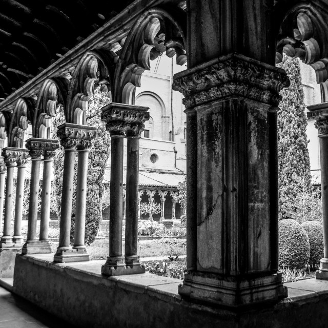 """Cloister Facing Musee des Augustins Courtyard B&W"" stock image"