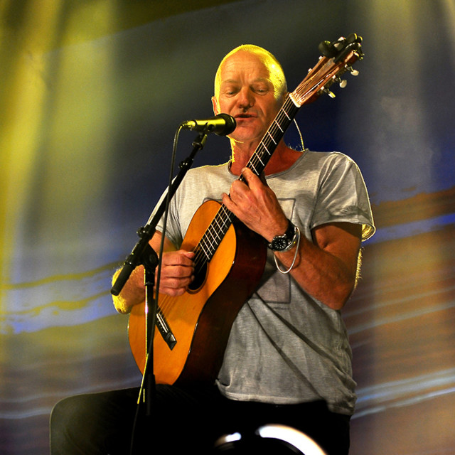 """Sting in Concert"" stock image"