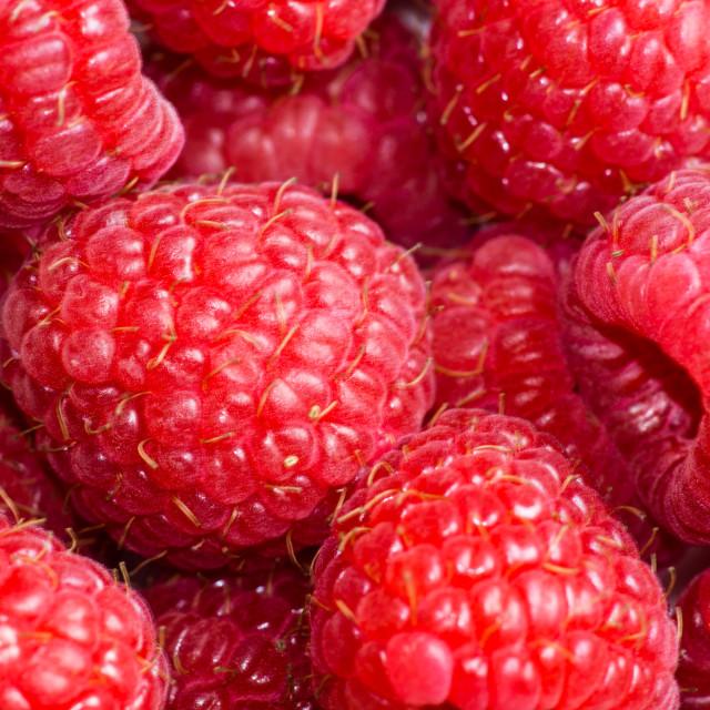 """Rasberries"" stock image"