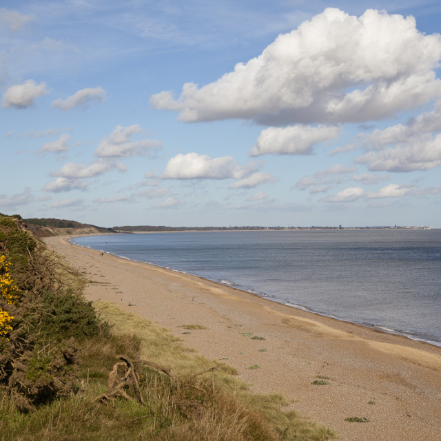 """Suffolk, Coast"" stock image"