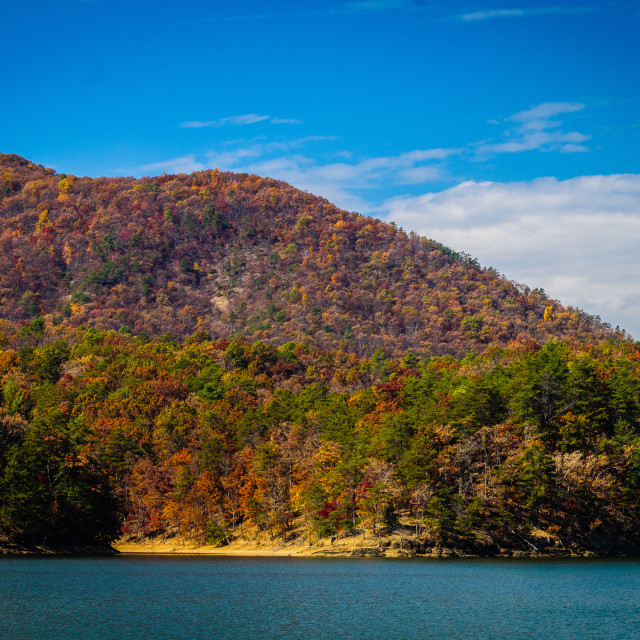 """""""Carvin's Cove in Fall"""" stock image"""