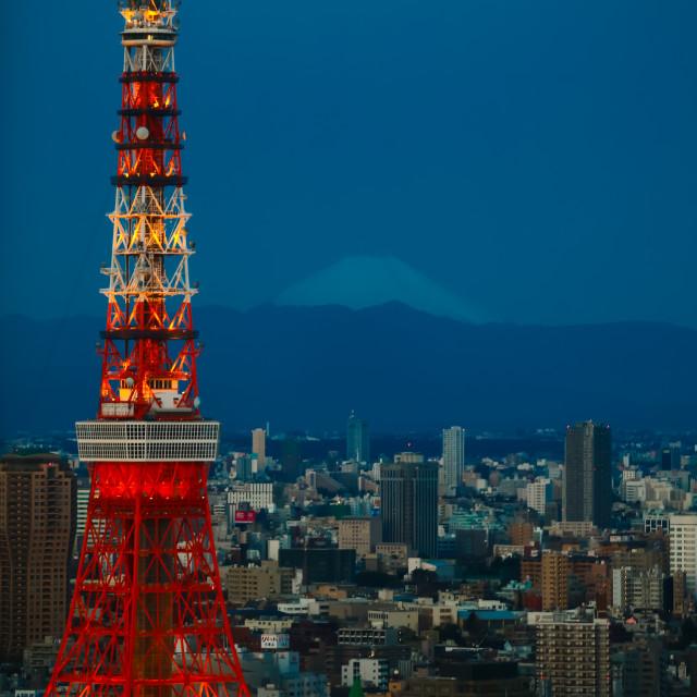 """""""Tokyo Giants"""" stock image"""