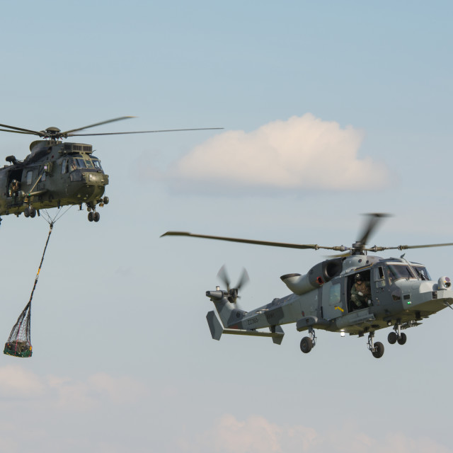 """Wildcat & Sea King"" stock image"