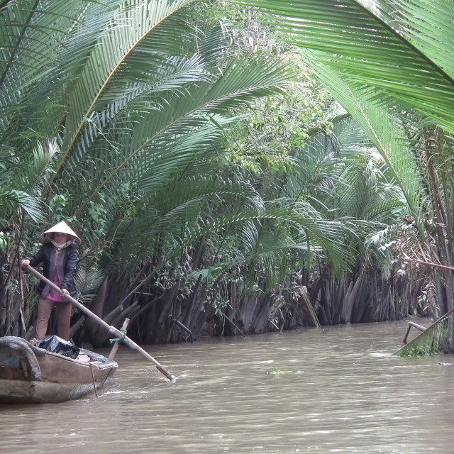 """Mekong Delta"" stock image"