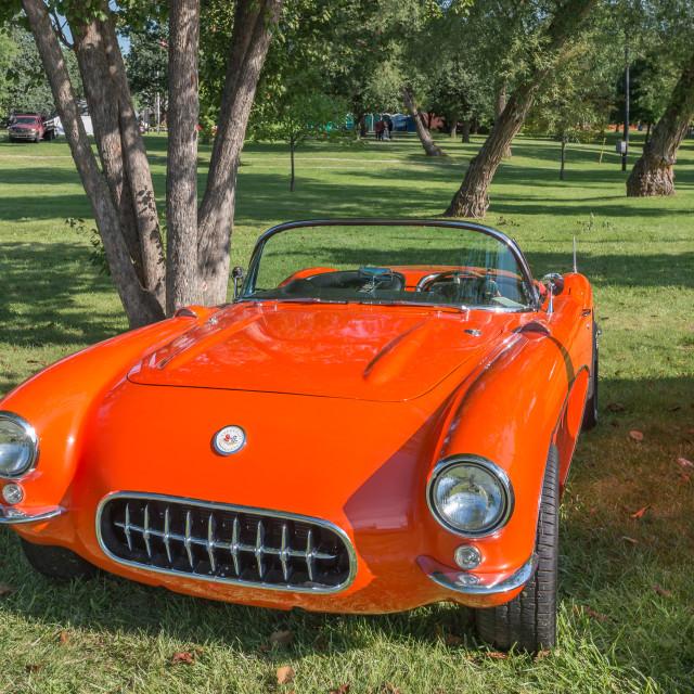 """1956-57 Corvette"" stock image"