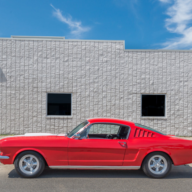 """""""Ford Mustang, Mustang Alley"""" stock image"""
