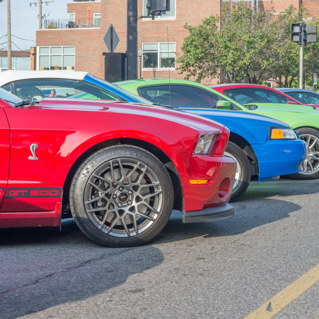 """Ford Mustangs, Mustang Alley"" stock image"