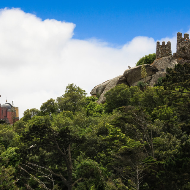 """""""Hills of Sintra - Portugal"""" stock image"""