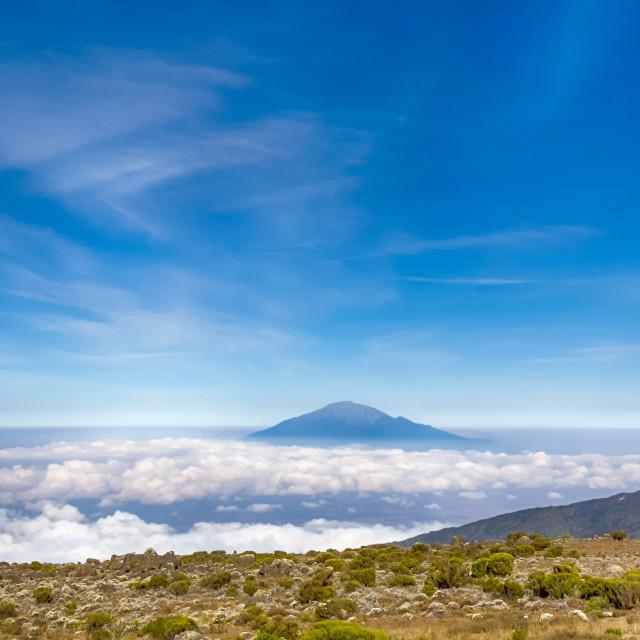 """Mt. Meru, Kilimanjaro Nat' Park"" stock image"