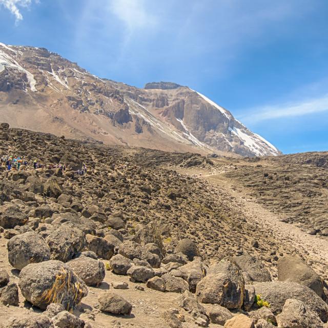 """Glaciers, Kilimanjaro, Africa"" stock image"