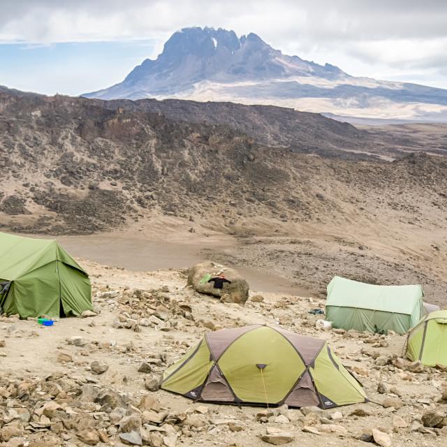 """Mawenzi Peak, Kilimanjaro National Park, Tanzania, Africa"" stock image"