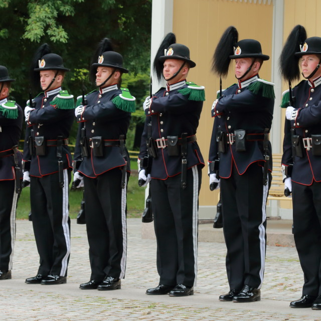 """Changing of the Guard, Oslo"" stock image"