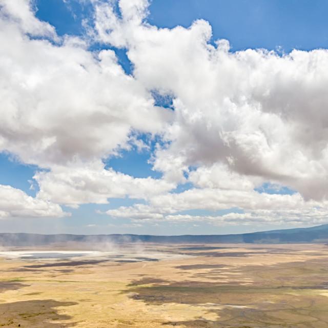 """Mist, Ngorongoro Conservation Area, Tanzania, Africa"" stock image"