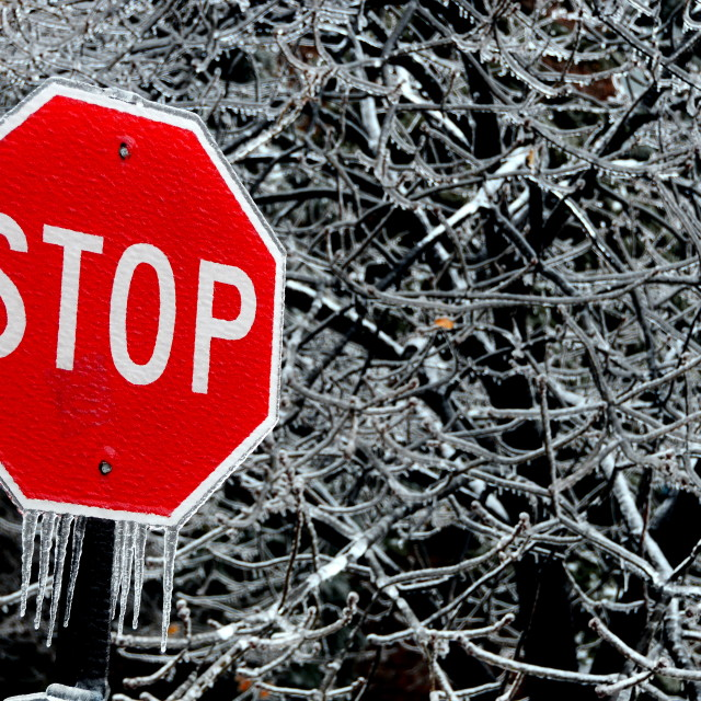 """Ice Storm"" stock image"