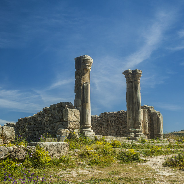 """Volubilis"" stock image"