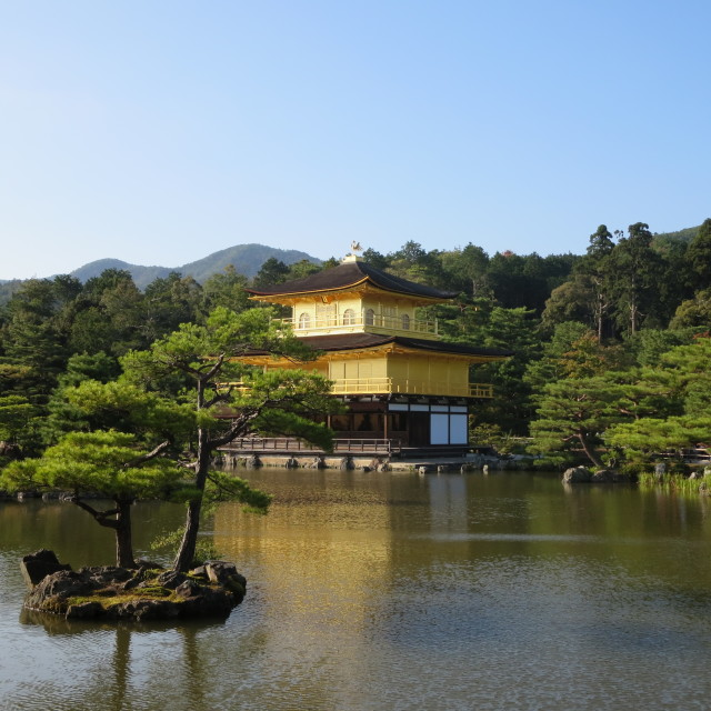 """Golden Pavilion Kyoto Japan"" stock image"
