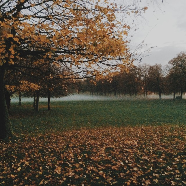 """""""Wollaton Hall and Deer Park part 1"""" stock image"""