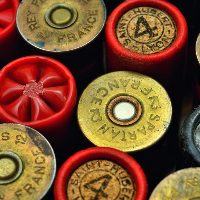 """shotgun and its cartridges"" stock image"