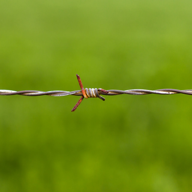 """Old Barbed Wire"" stock image"