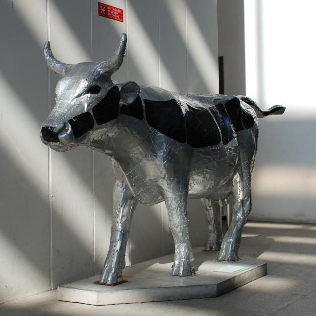 """Metal cow"" stock image"