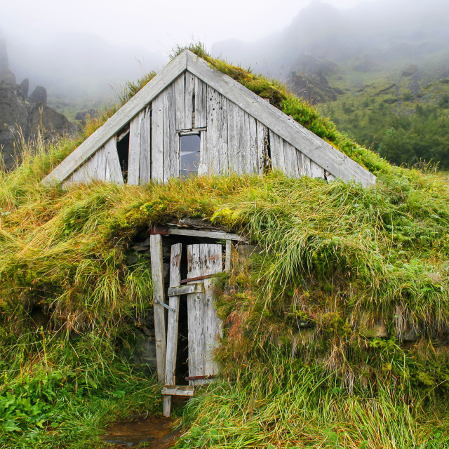 """""""Wooden house isolated with grass in Iceland"""" stock image"""