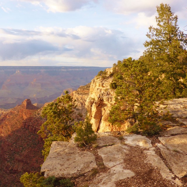 """""""The grand Canyon."""" stock image"""