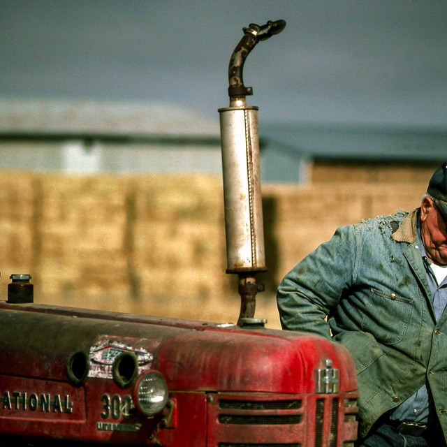 """American Farmer"" stock image"