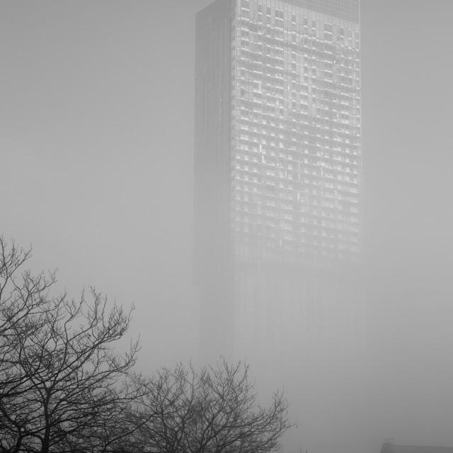"""""""Beacon In The Fog II"""" stock image"""