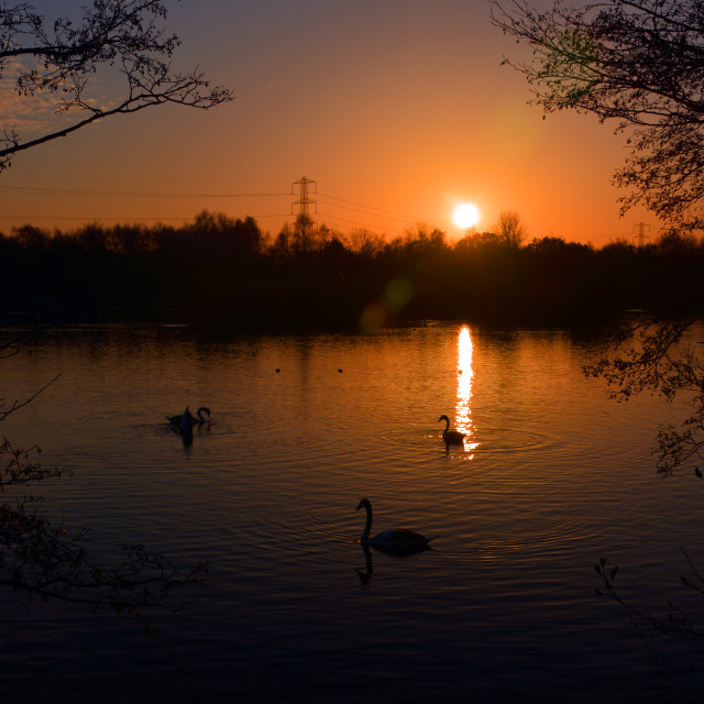 """""""At the going down of the Sun at Horseshoe Lake, Sandhurst"""" stock image"""