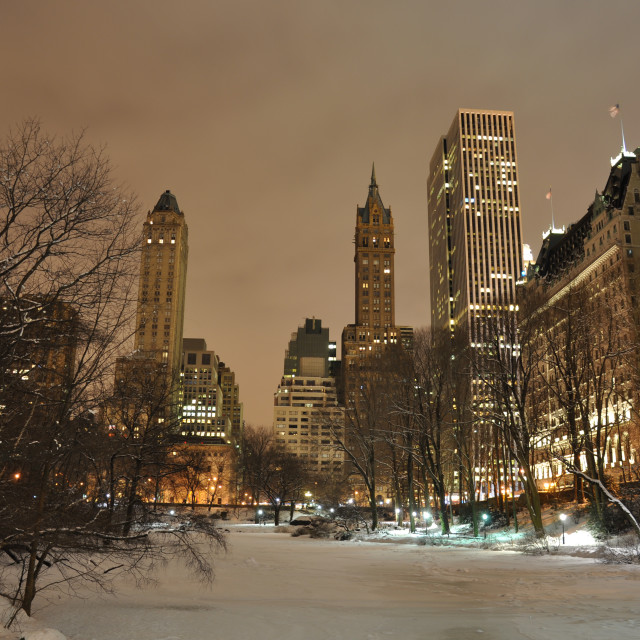 """""""New York Central Park"""" stock image"""