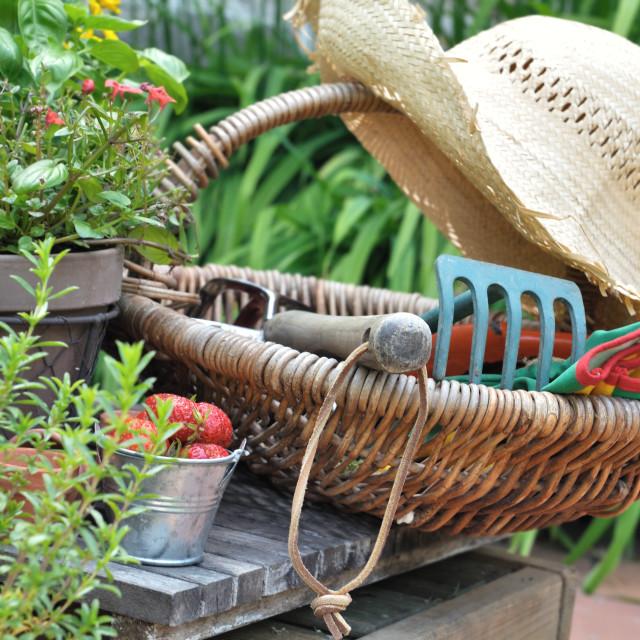 """""""garden accessories"""" stock image"""