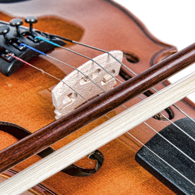 """close up on the bridge of a violin"" stock image"