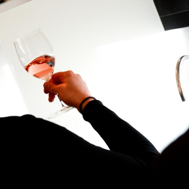 """Dégustation Vin"" stock image"