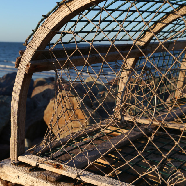 """Lobster pot"" stock image"