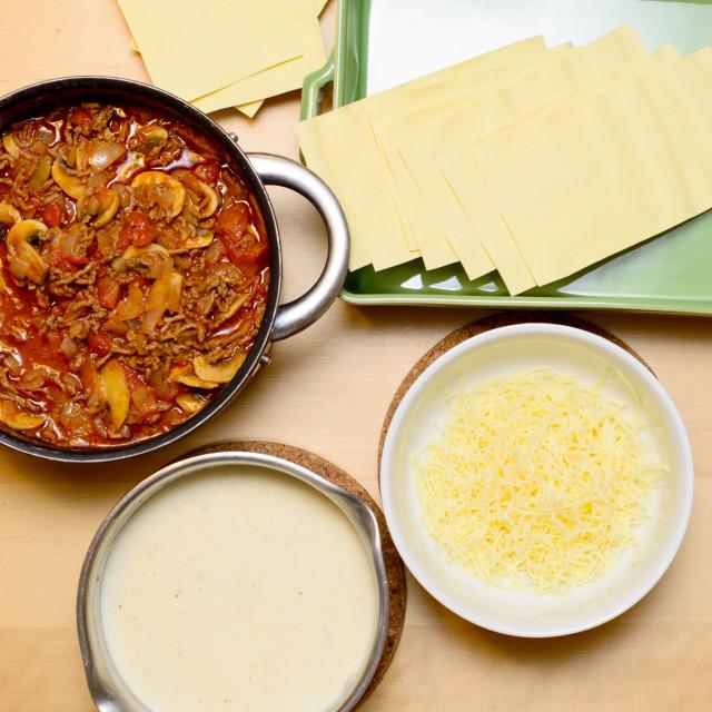 """different ingredients for preparing lasagna"" stock image"