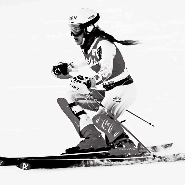 """Slalom"" stock image"