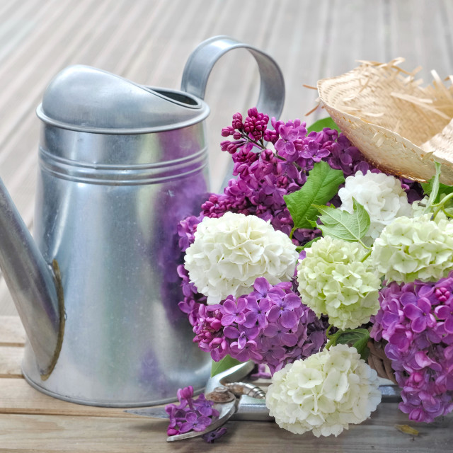 """flowers in basket on terrace"" stock image"